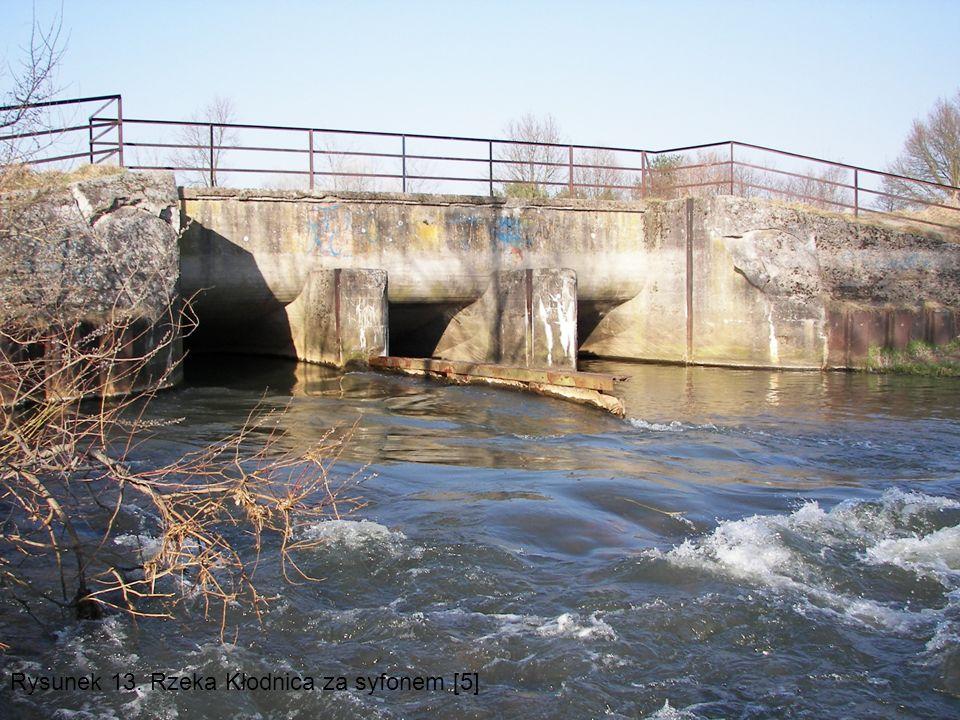 Rysunek 13. Rzeka Kłodnica za syfonem [5]