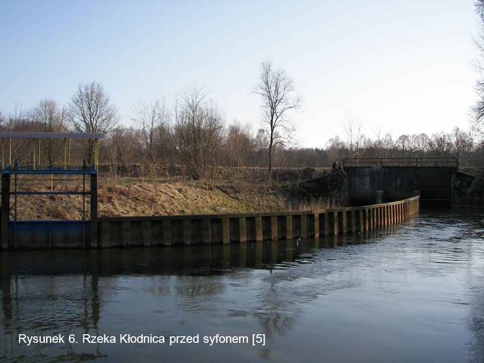 Rysunek 6. Rzeka Kłodnica przed syfonem [5]