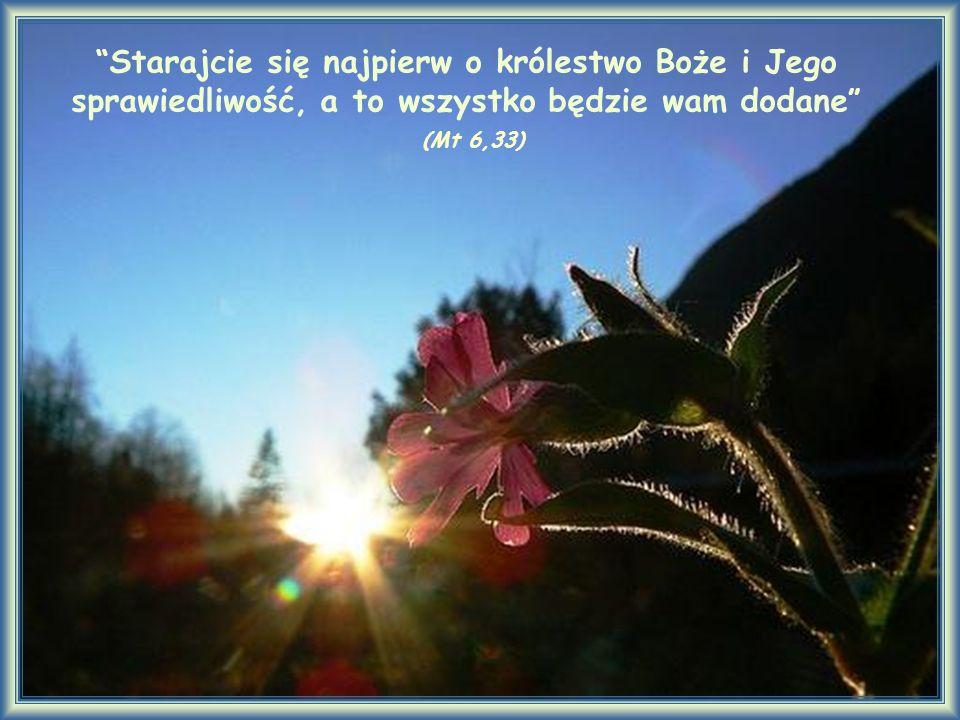 Starajcie się najpierw o królestwo Boże i Jego sprawiedliwość, a to wszystko będzie wam dodane (Mt 6,33)