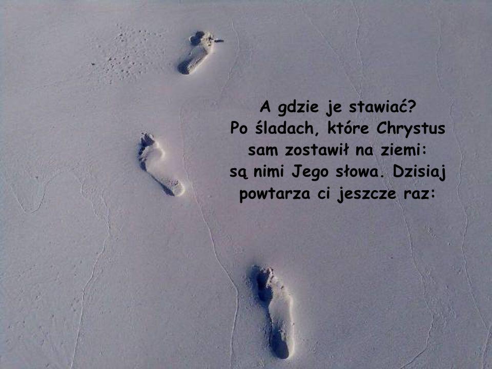 Świat dla chrześcijanina jest jakby trzęsawiskiem, w którym trzeba wiedzieć, gdzie stawiać stopy.