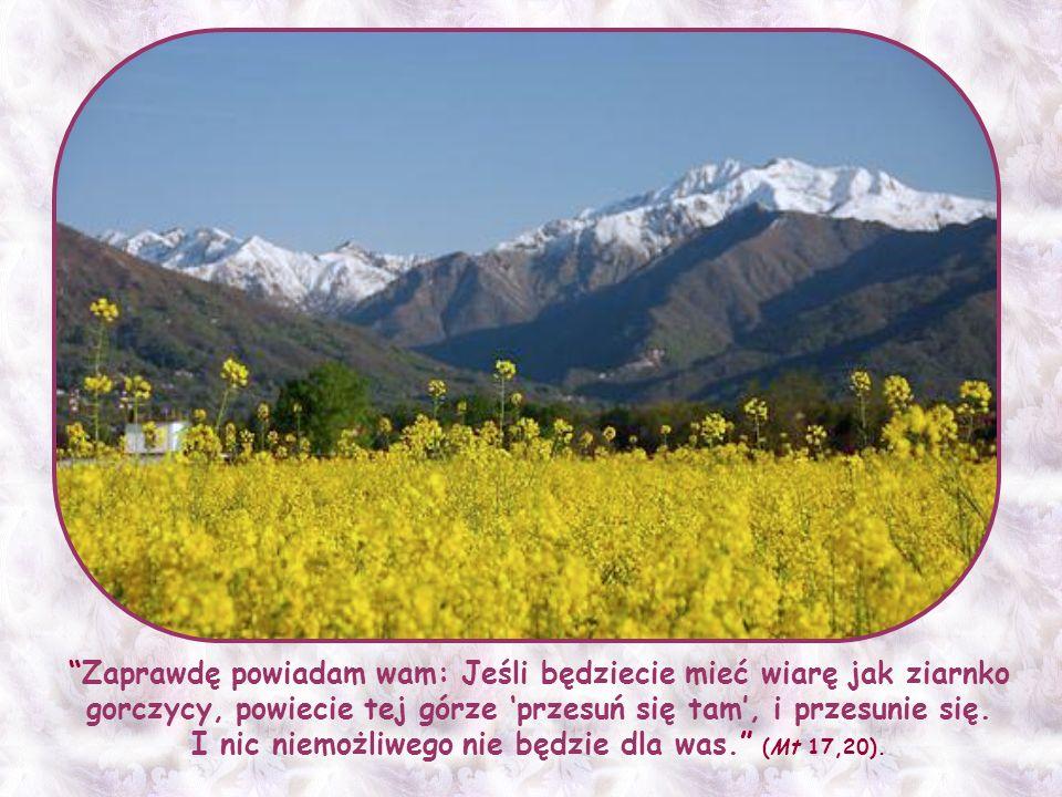 Ale właśnie wtedy Jezus zapewnia swoich, że ich wiara poruszy góry obojętności i braku zainteresowania znamienne dla świata.