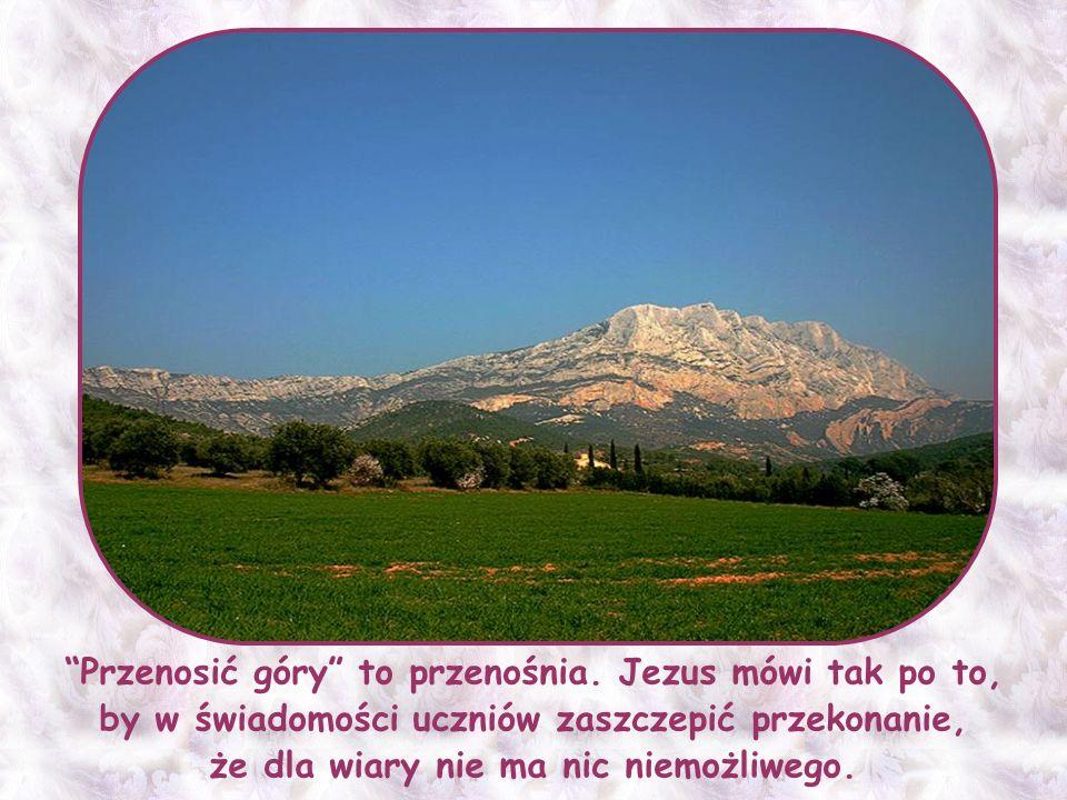 Jeślibyś szukał, nawet w całej historii Kościoła, to – o ile wiem – nie znajdziesz takiego świętego, który by swoją wiarą przesuwał góry.