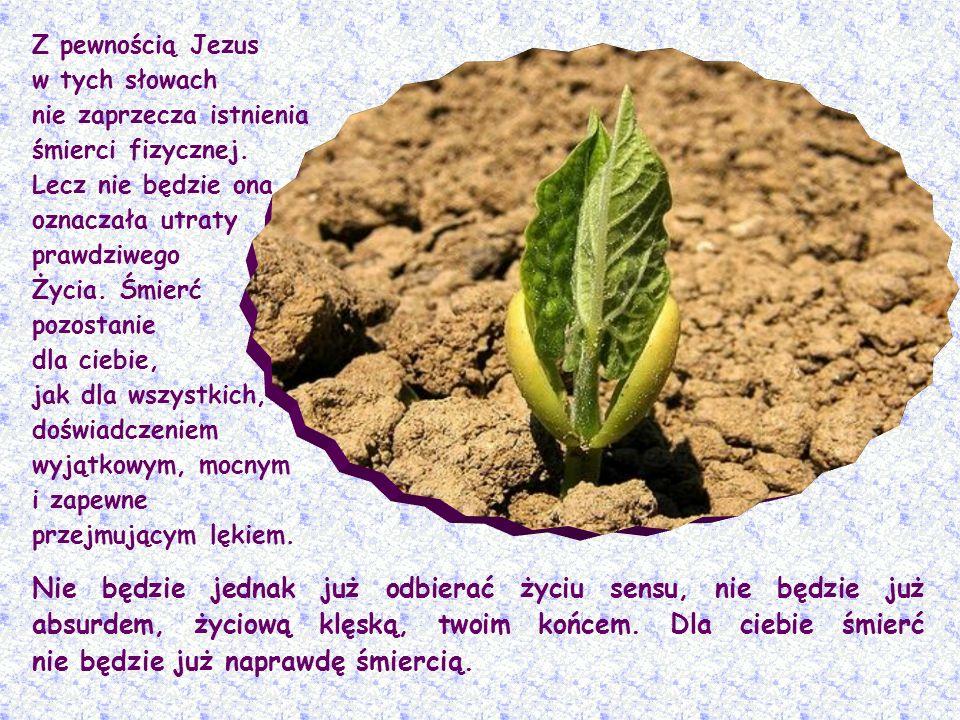 Ja jestem zmartwychwstaniem i życiem (J 11,25).