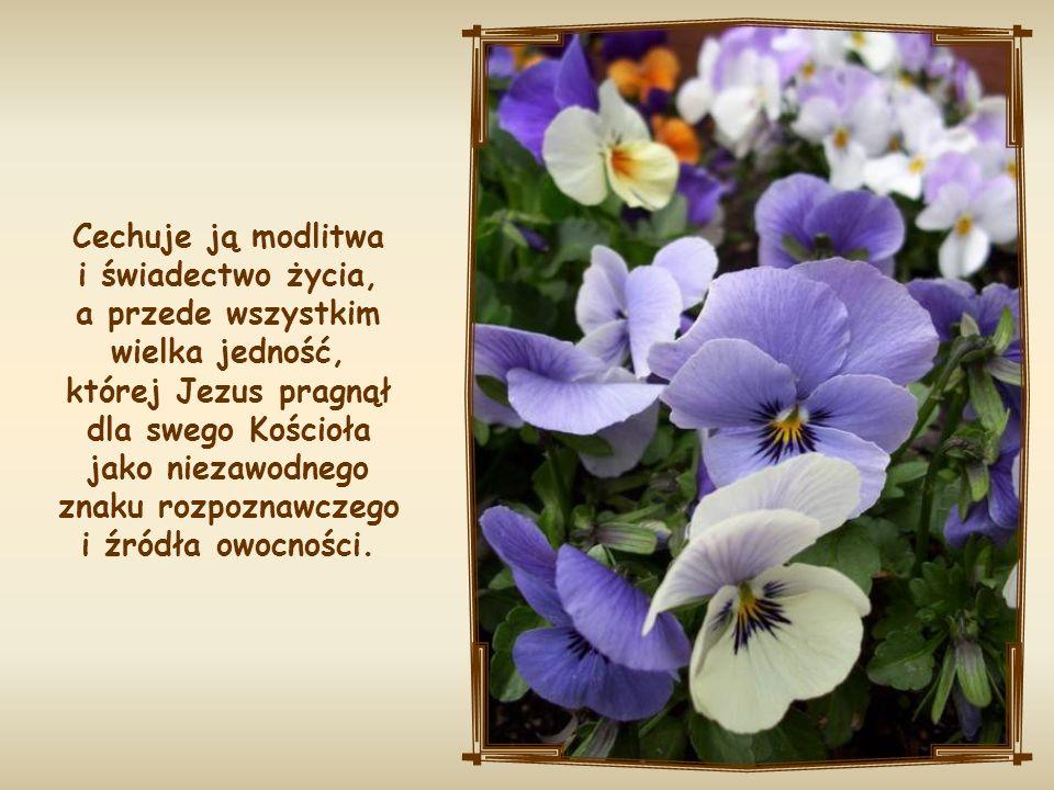 Cechuje ją modlitwa i świadectwo życia, a przede wszystkim wielka jedność, której Jezus pragnął dla swego Kościoła jako niezawodnego znaku rozpoznawczego i źródła owocności.