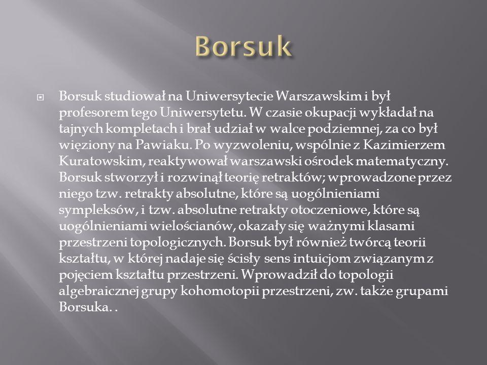Borsuk studiował na Uniwersytecie Warszawskim i był profesorem tego Uniwersytetu. W czasie okupacji wykładał na tajnych kompletach i brał udział w wal