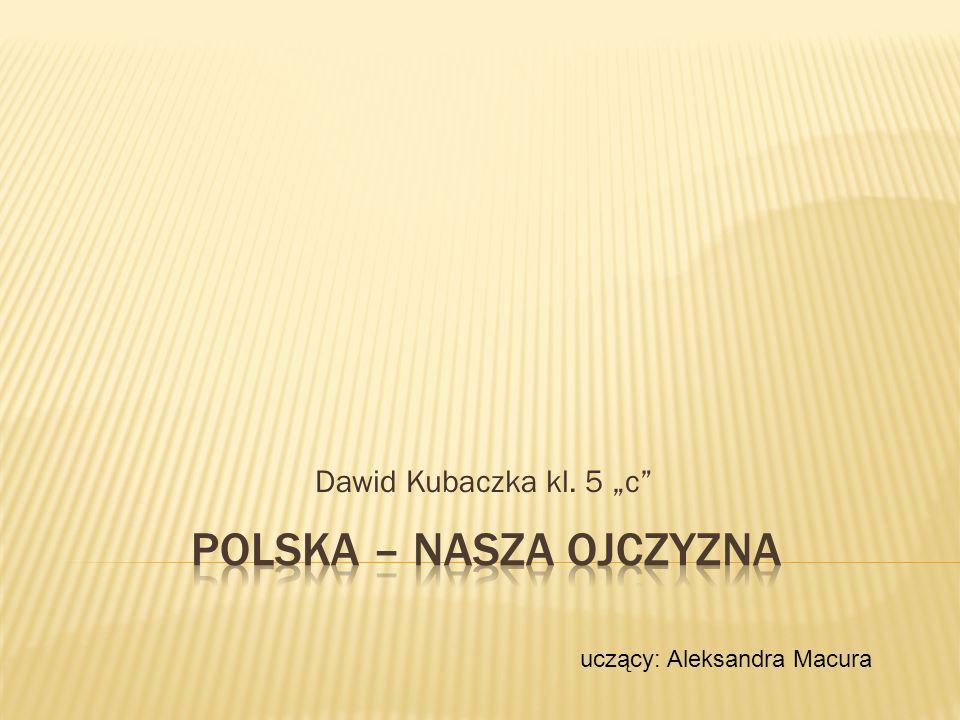 Dawid Kubaczka kl. 5 c uczący: Aleksandra Macura