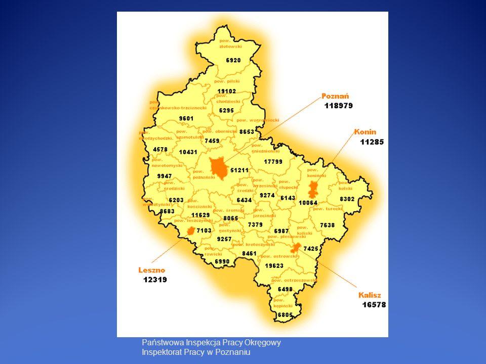 Liczba kontroli w latach 2005-2010 Państwowa Inspekcja Pracy Okręgowy Inspektorat Pracy w Poznaniu