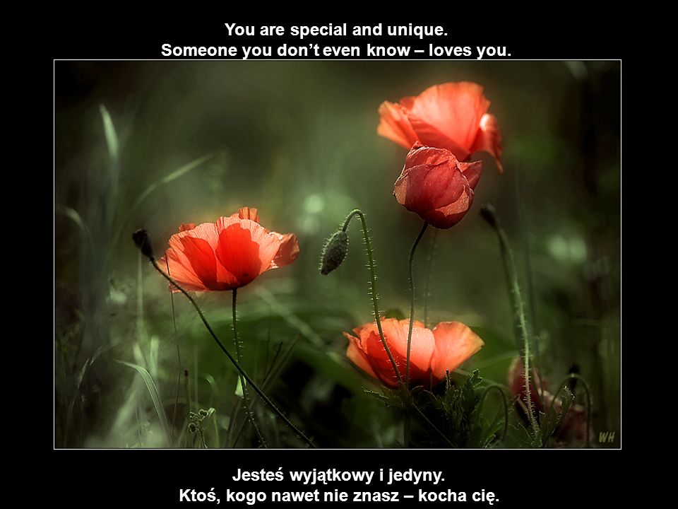 You are special and unique.Someone you dont even know – loves you.