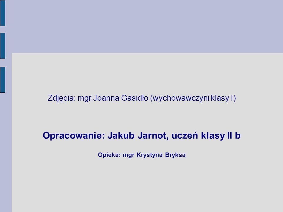Zdjęcia: mgr Joanna Gasidło (wychowawczyni klasy I) Opracowanie: Jakub Jarnot, uczeń klasy II b Opieka: mgr Krystyna Bryksa