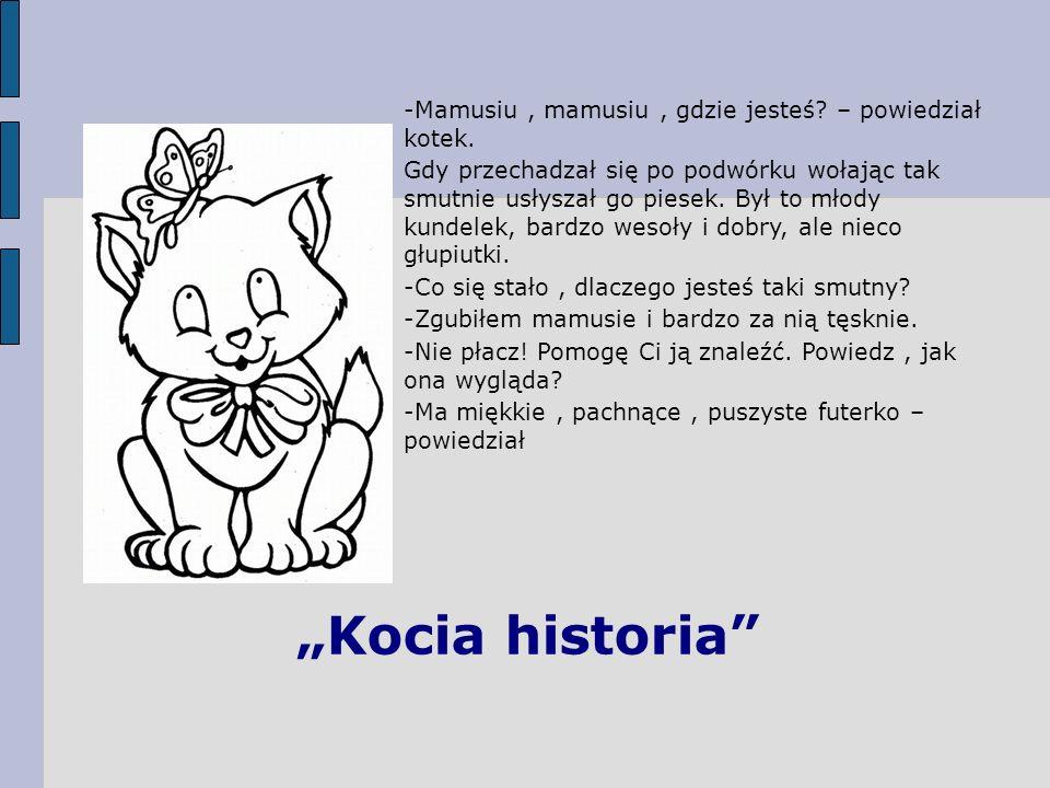 Kocia historia -Mamusiu, mamusiu, gdzie jesteś? – powiedział kotek. Gdy przechadzał się po podwórku wołając tak smutnie usłyszał go piesek. Był to mło