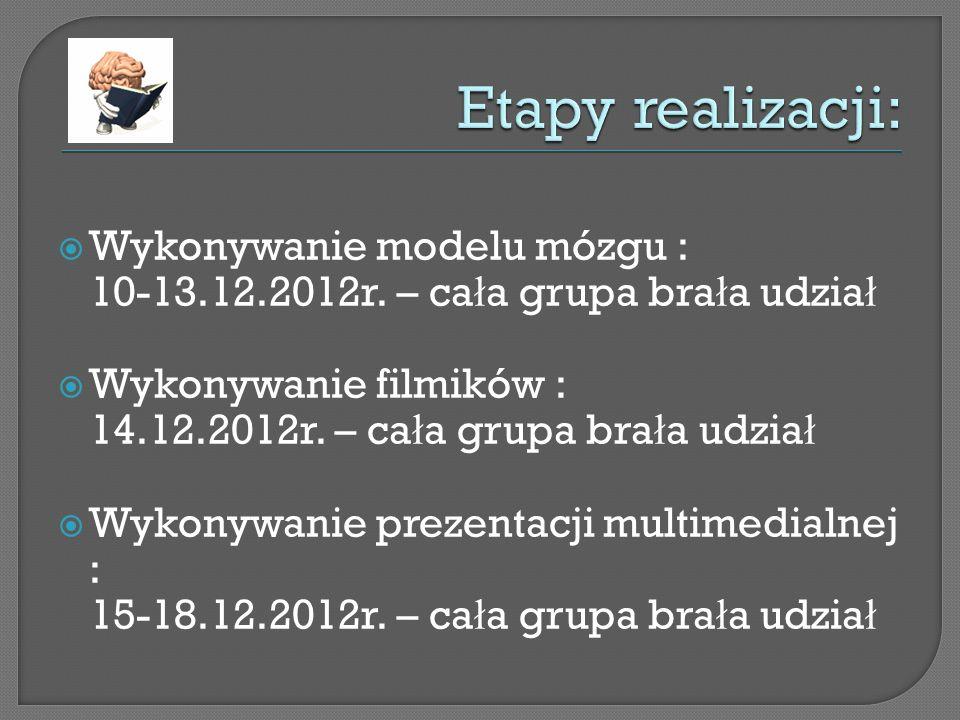 Wykonywanie modelu mózgu : 10-13.12.2012r.