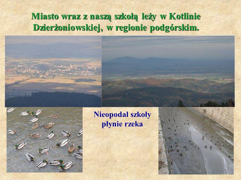 Nieopodal szkoły płynie rzeka Miasto wraz z naszą szkołą leży w Kotlinie Dzierżoniowskiej, w regionie podgórskim.