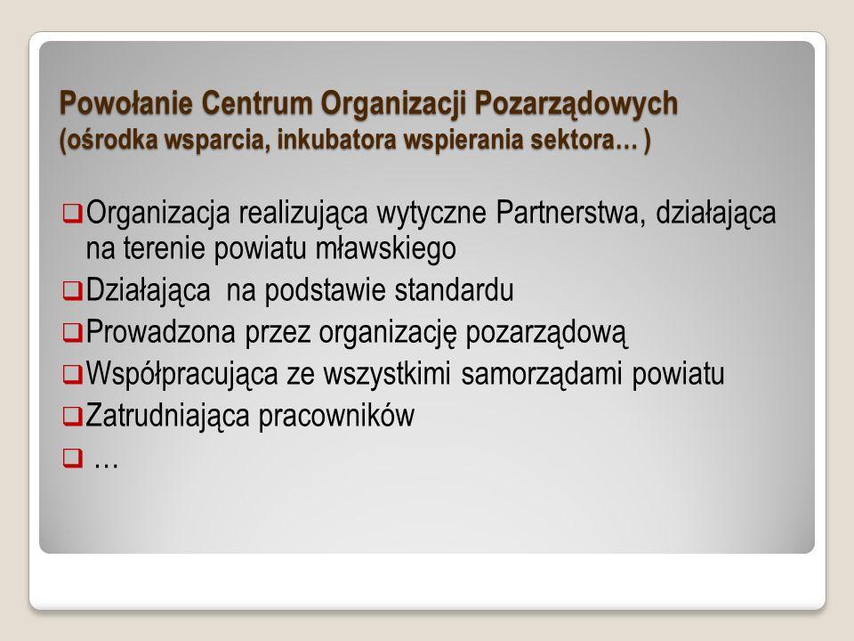 Organizacja realizująca wytyczne Partnerstwa, działająca na terenie powiatu mławskiego Działająca na podstawie standardu Prowadzona przez organizację pozarządową Współpracująca ze wszystkimi samorządami powiatu Zatrudniająca pracowników … Powołanie Centrum Organizacji Pozarządowych (ośrodka wsparcia, inkubatora wspierania sektora… )