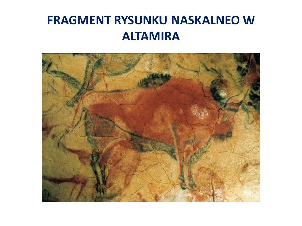 FRAGMENT RYSUNKU NASKALNEO W ALTAMIRA