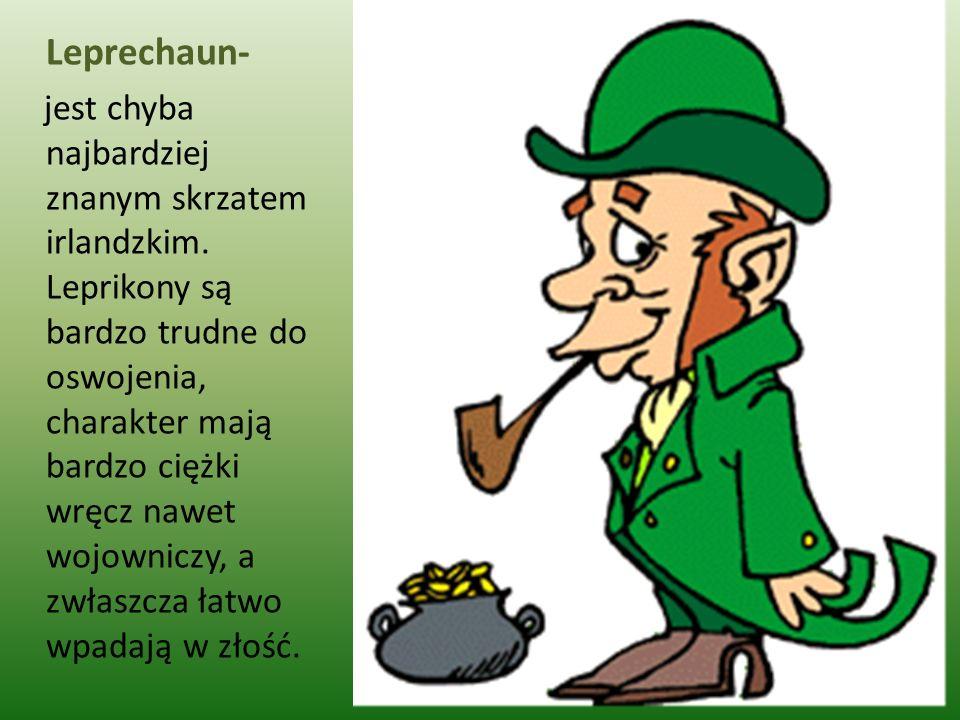 Leprechaun- jest chyba najbardziej znanym skrzatem irlandzkim. Leprikony są bardzo trudne do oswojenia, charakter mają bardzo ciężki wręcz nawet wojow