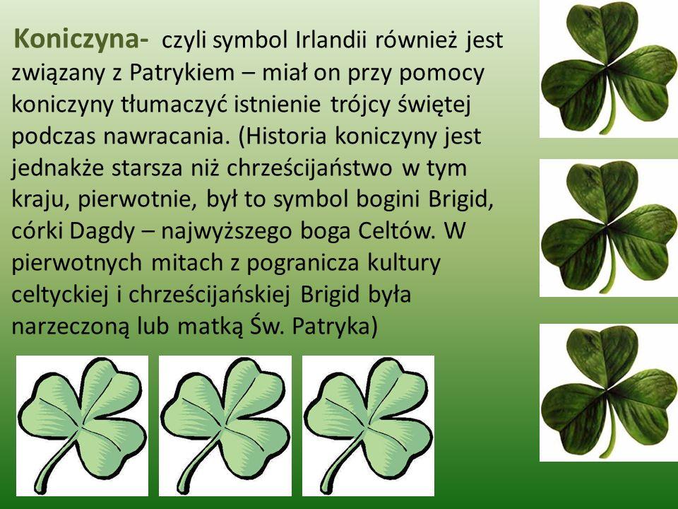 Koniczyna- czyli symbol Irlandii również jest związany z Patrykiem – miał on przy pomocy koniczyny tłumaczyć istnienie trójcy świętej podczas nawracan