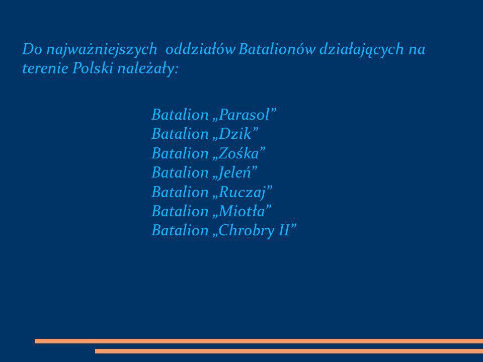 Do najważniejszych oddziałów Batalionów działających na terenie Polski należały: Batalion Parasol Batalion Dzik Batalion Zośka Batalion Jeleń Batalion