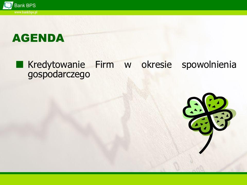 www.bankbps.pl AGENDA Kredytowanie Firm w okresie spowolnienia gospodarczego