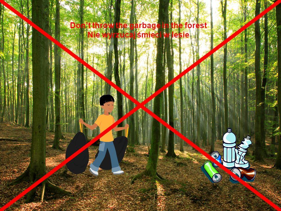 Dont throw the garbage in the forest Nie wyrzucaj śmieci w lesie