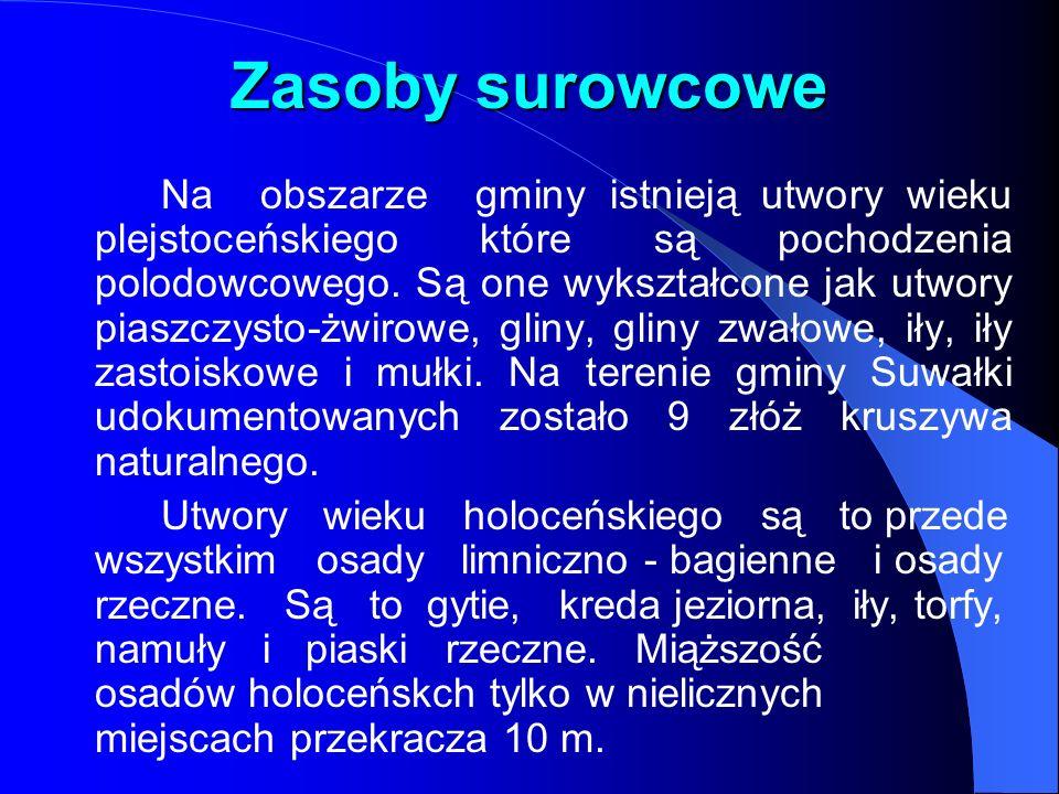 Zasoby surowcowe Na obszarze gminy istnieją utwory wieku plejstoceńskiego które są pochodzenia polodowcowego.