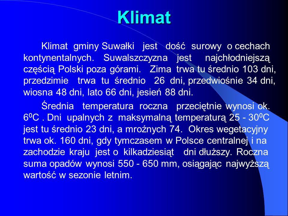 Klimat Klimat gminy Suwałki jest dość surowy o cechach kontynentalnych.