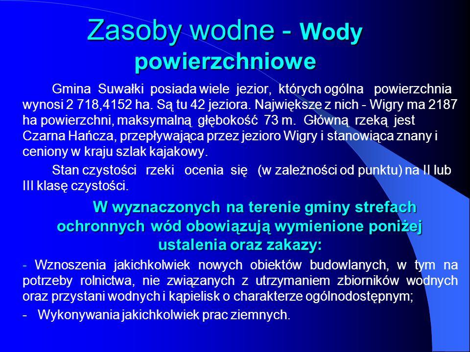 Zasoby wodne - Wody powierzchniowe Gmina Suwałki posiada wiele jezior, których ogólna powierzchnia wynosi 2 718,4152 ha. Są tu 42 jeziora. Największe