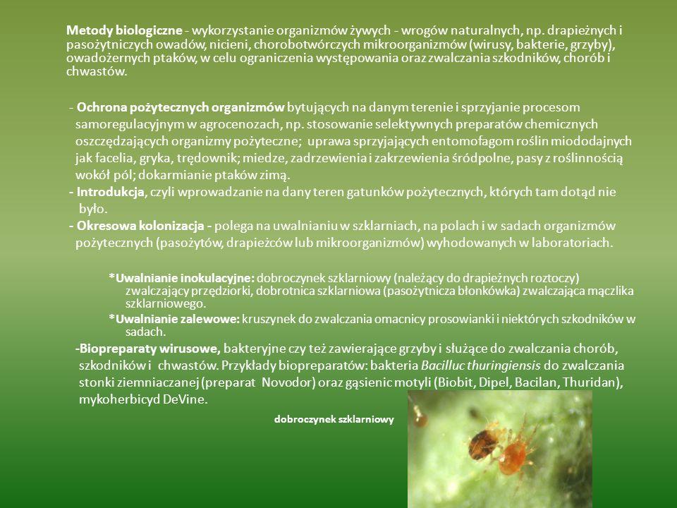 Metody biologiczne - wykorzystanie organizmów żywych - wrogów naturalnych, np. drapieżnych i pasożytniczych owadów, nicieni, chorobotwórczych mikroorg