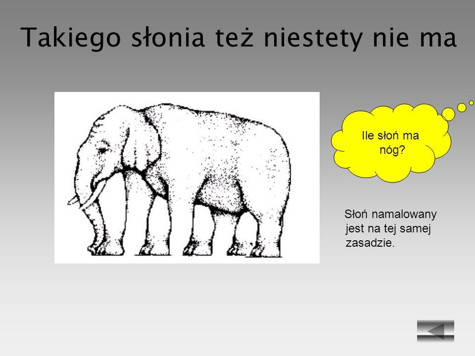Takiego słonia też niestety nie ma Słoń namalowany jest na tej samej zasadzie. Ile słoń ma nóg?