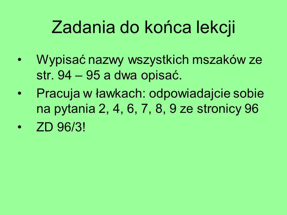 Zadania do końca lekcji Wypisać nazwy wszystkich mszaków ze str. 94 – 95 a dwa opisać. Pracuja w ławkach: odpowiadajcie sobie na pytania 2, 4, 6, 7, 8