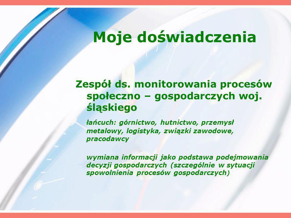 Moje doświadczenia Zespół ds. monitorowania procesów społeczno – gospodarczych woj. śląskiego łańcuch: górnictwo, hutnictwo, przemysł metalowy, logist