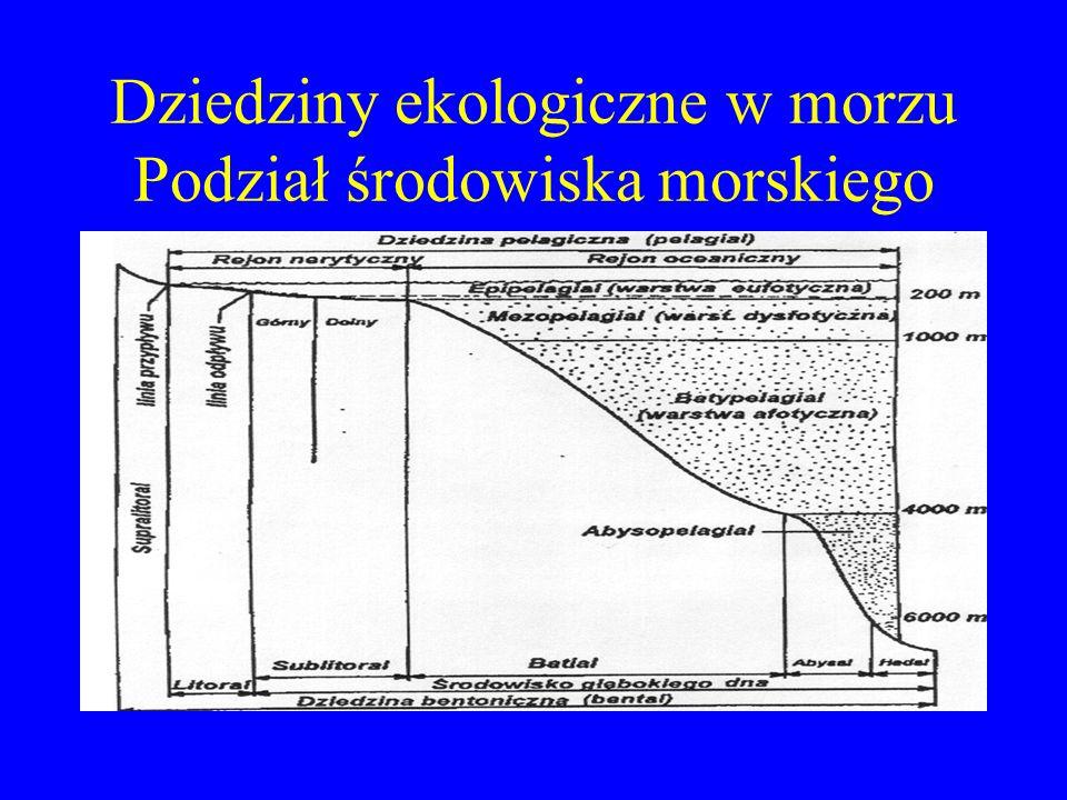 Zbiorniki wodne Morza i oceany Jeziora Zbiorniki zaporowe Stawy Rzeki