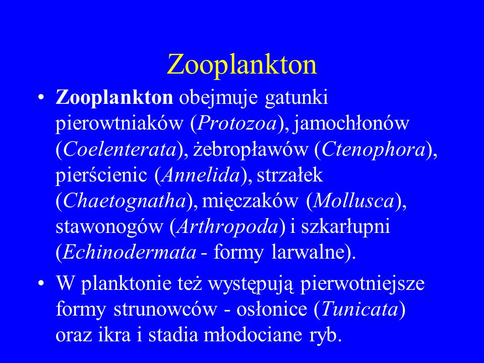 Zooplankton Zooplankton obejmuje gatunki pierowtniaków (Protozoa), jamochłonów (Coelenterata), żebropławów (Ctenophora), pierścienic (Annelida), strzałek (Chaetognatha), mięczaków (Mollusca), stawonogów (Arthropoda) i szkarłupni (Echinodermata - formy larwalne).