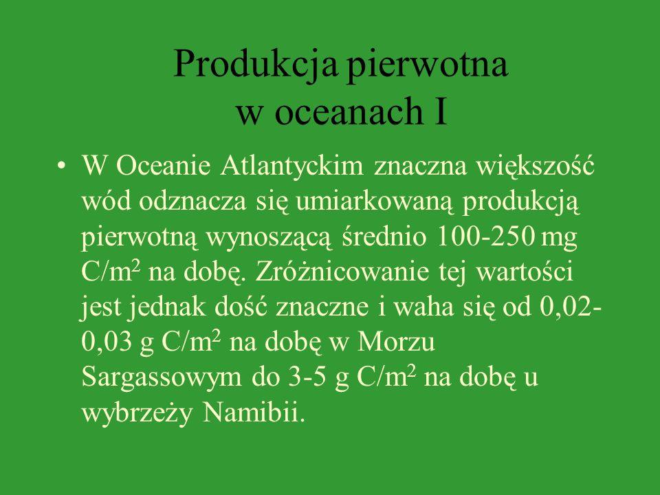 Produkcja pierwotna w oceanach W procesach produkcyjnych oceanów podstawową rolę odgrywa fitoplankton stanowiący ponad 90% zasobów pożywienia zwierząt