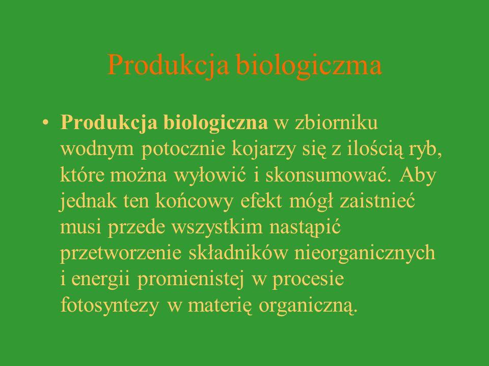 Produkcja biologiczma Produkcja biologiczna w zbiorniku wodnym potocznie kojarzy się z ilością ryb, które można wyłowić i skonsumować.