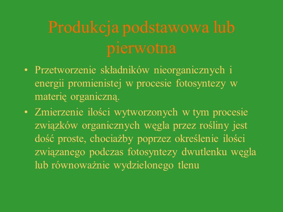 Produkcja podstawowa lub pierwotna Przetworzenie składników nieorganicznych i energii promienistej w procesie fotosyntezy w materię organiczną.