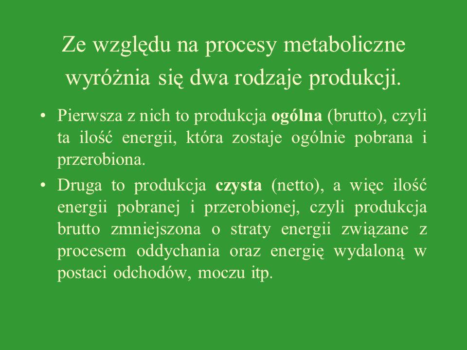 Ze względu na procesy metaboliczne wyróżnia się dwa rodzaje produkcji.