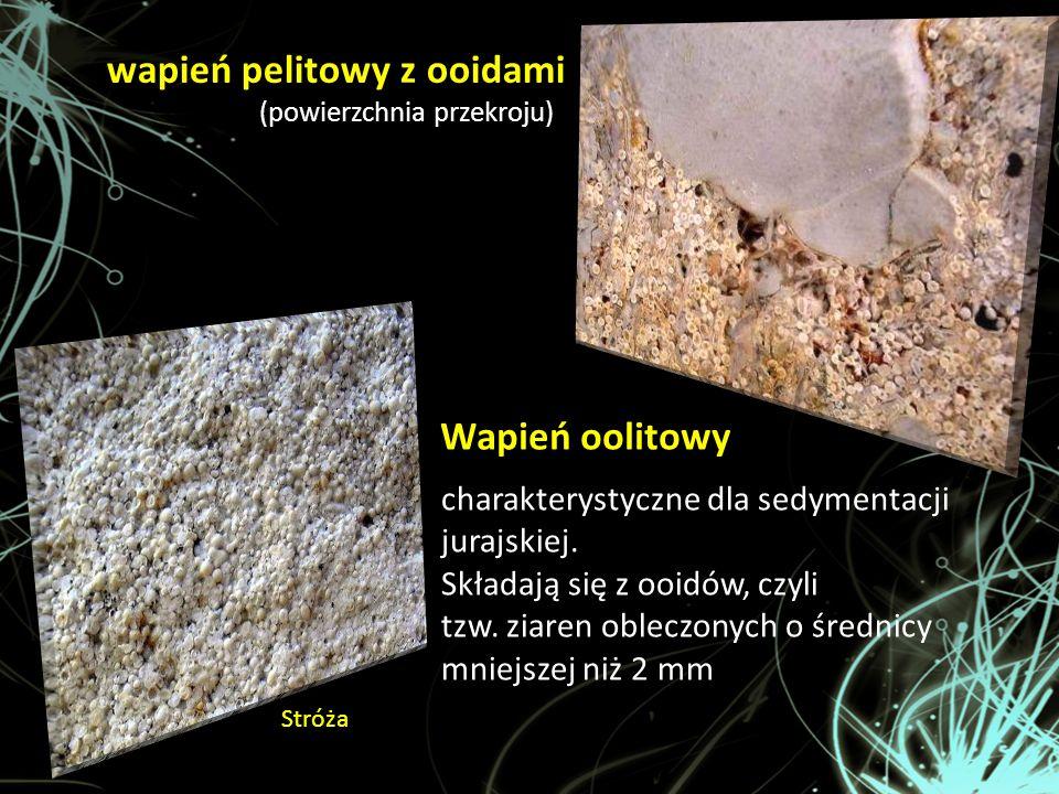 Wapień oolitowy charakterystyczne dla sedymentacji jurajskiej. Składają się z ooidów, czyli tzw. ziaren obleczonych o średnicy mniejszej niż 2 mm wapi