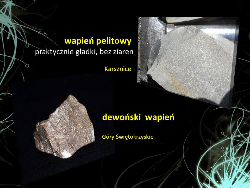 dewoński wapień Góry Świętokrzyskie wapień pelitowy praktycznie gładki, bez ziaren Karsznice