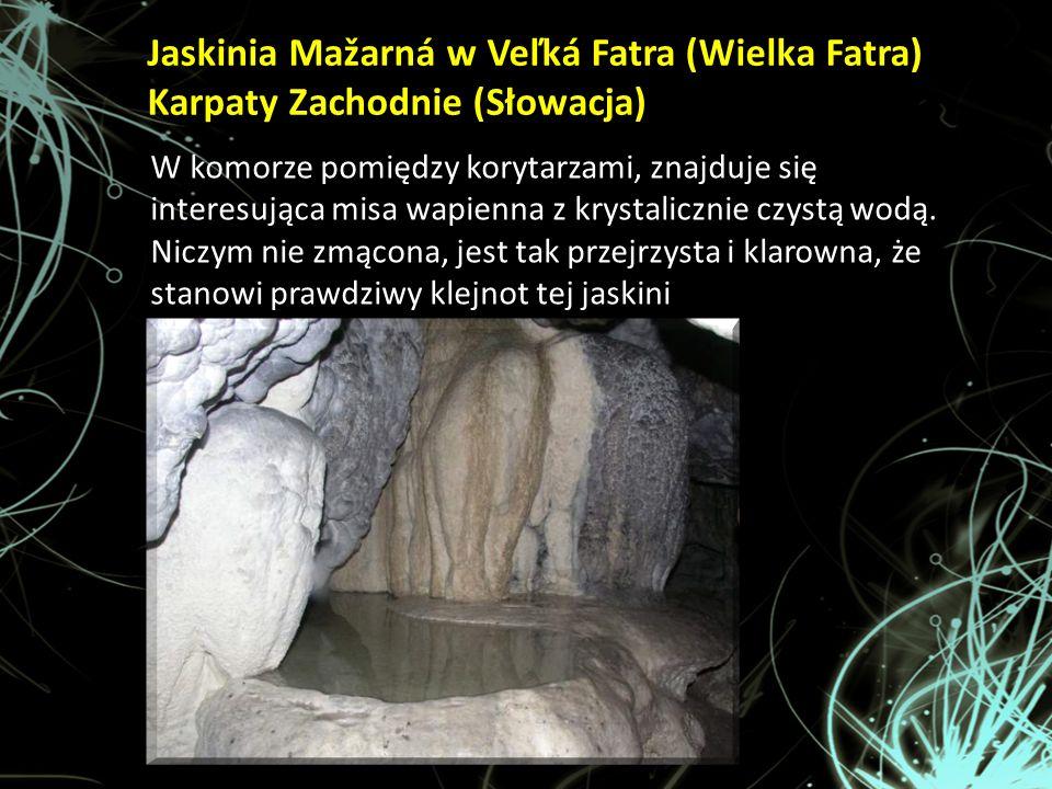 W komorze pomiędzy korytarzami, znajduje się interesująca misa wapienna z krystalicznie czystą wodą. Niczym nie zmącona, jest tak przejrzysta i klarow