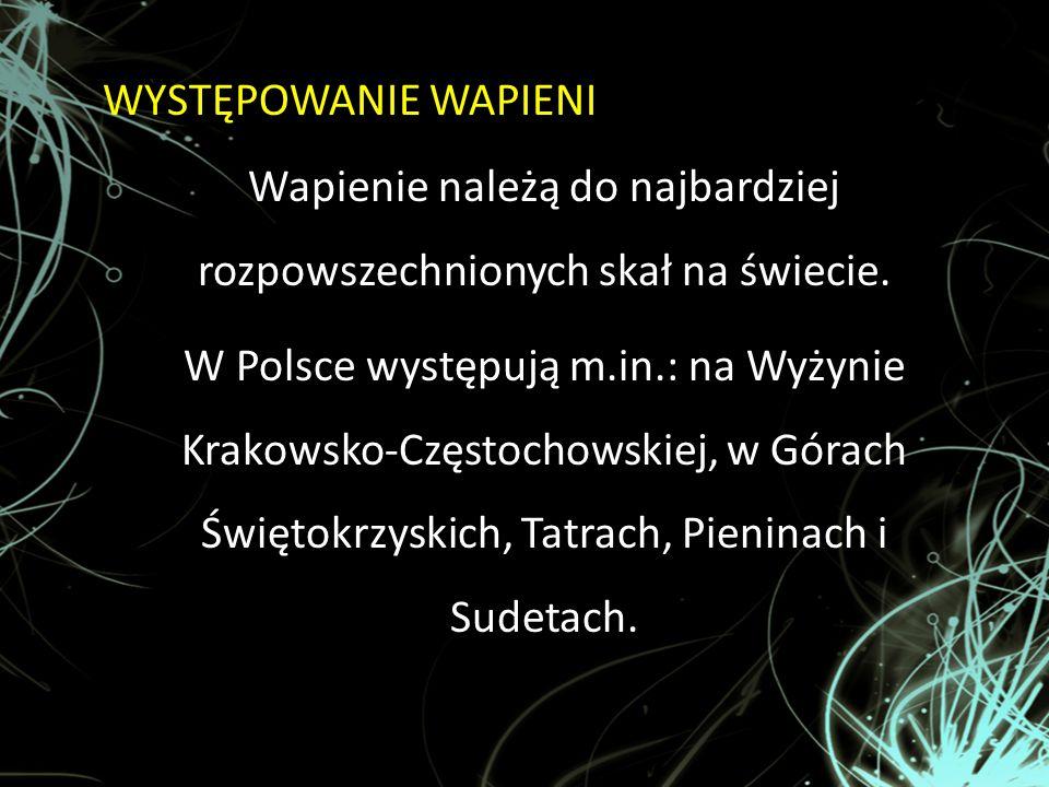 WYSTĘPOWANIE WAPIENI Wapienie należą do najbardziej rozpowszechnionych skał na świecie. W Polsce występują m.in.: na Wyżynie Krakowsko-Częstochowskiej