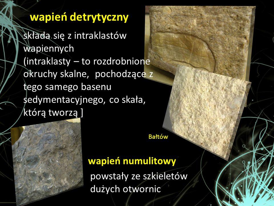 wapień detrytyczny wapień numulitowy składa się z intraklastów wapiennych (intraklasty – to rozdrobnione okruchy skalne, pochodzące z tego samego base