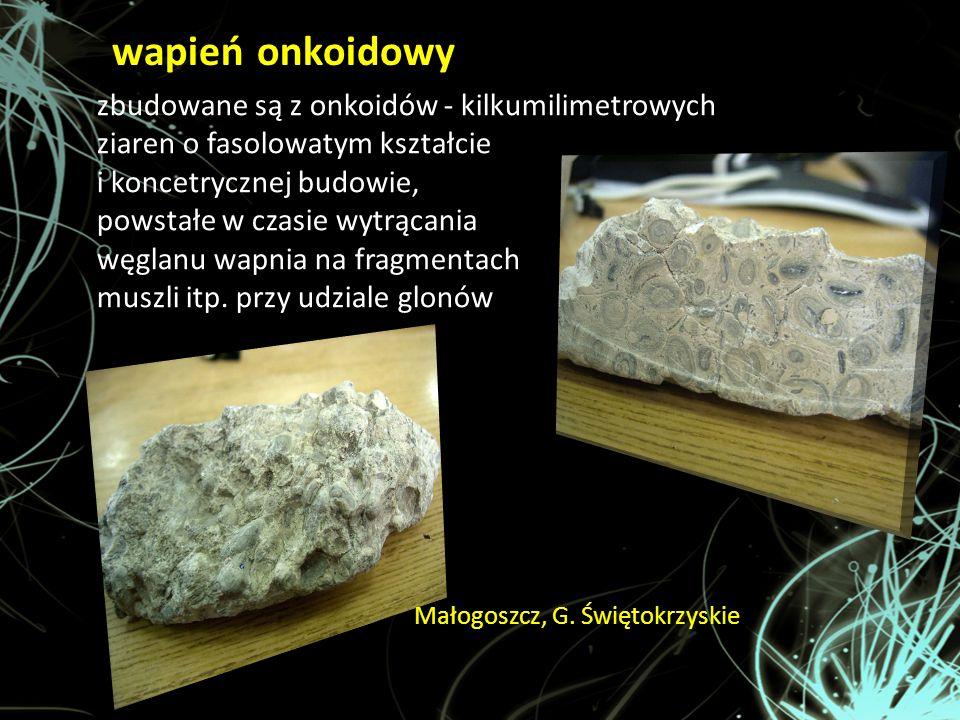wapień onkoidowy Małogoszcz, G. Świętokrzyskie zbudowane są z onkoidów - kilkumilimetrowych ziaren o fasolowatym kształcie i koncetrycznej budowie, po