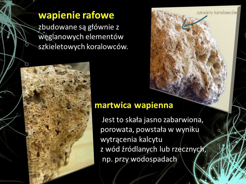 martwica wapienna wapienie rafowe zbudowane są głównie z węglanowych elementów szkieletowych koralowców. Jest to skała jasno zabarwiona, porowata, pow