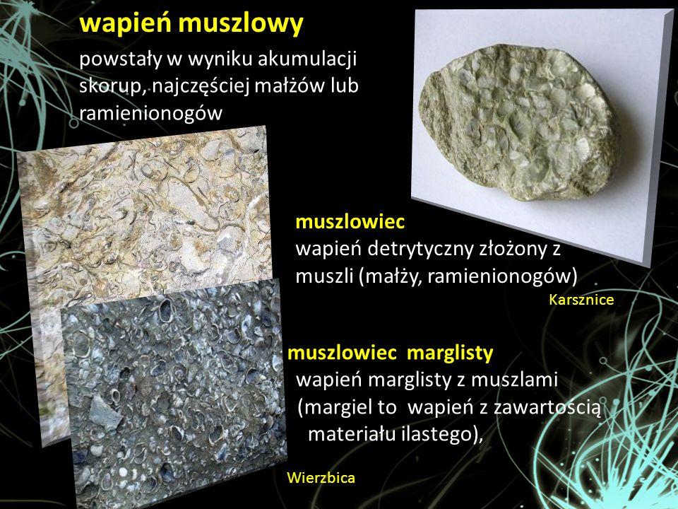 wapień muszlowy powstały w wyniku akumulacji skorup, najczęściej małżów lub ramienionogów muszlowiec wapień detrytyczny złożony z muszli (małży, ramie