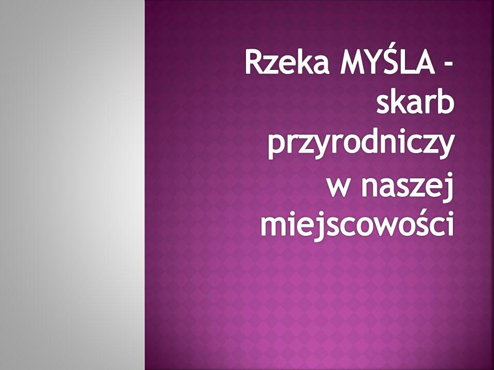 Wzmiankowana po raz pierwszy pod nazwą Mizzla w 1232 w nadaniu księcia wielkopolskiego Władysława Odonica wsi Chwarszczany wraz z 1000 łanami ziemi (ok.