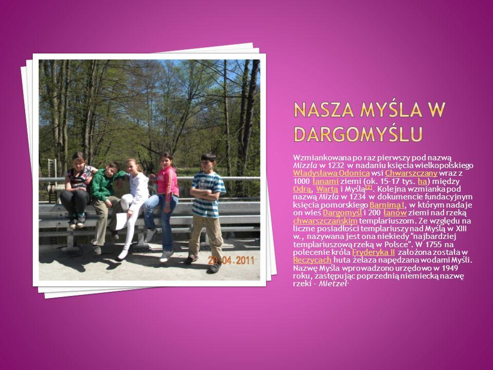 Wzmiankowana po raz pierwszy pod nazwą Mizzla w 1232 w nadaniu księcia wielkopolskiego Władysława Odonica wsi Chwarszczany wraz z 1000 łanami ziemi (o