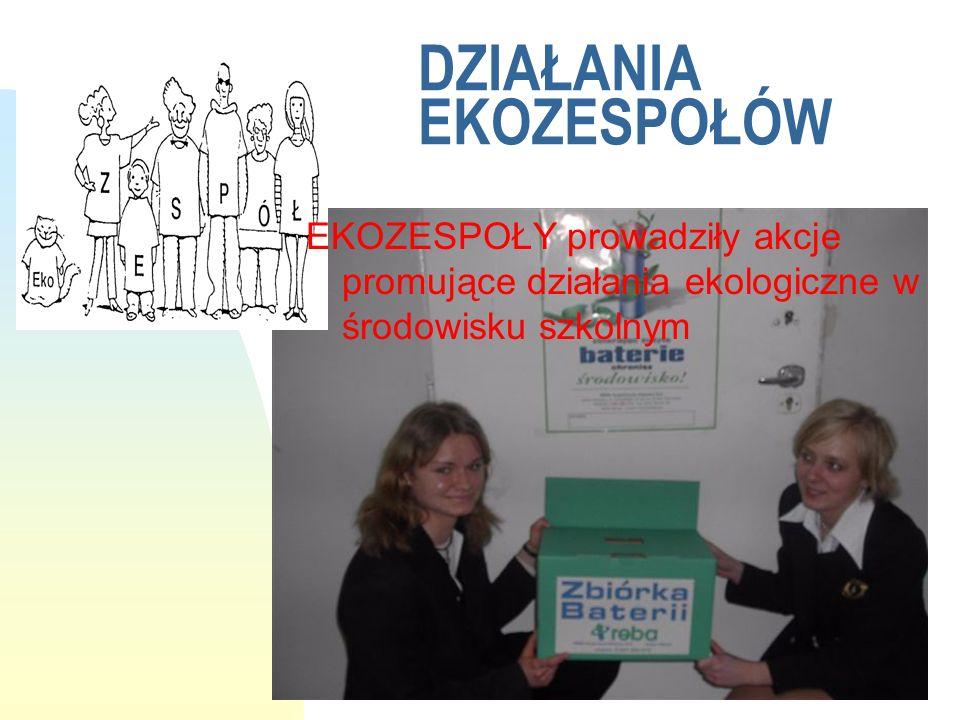W roku szkolnym 2004/2005 w Conradinum działały trzy EKOZESPOŁY