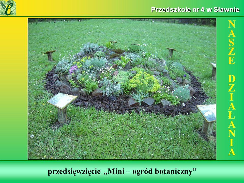 Wybrane działania w ramach zdobywania Zielonego Certyfikatu przedsięwzięcie Mini – ogród botaniczny NASZE DZIAŁANIANASZE DZIAŁANIA Przedszkole nr 4 w Sławnie