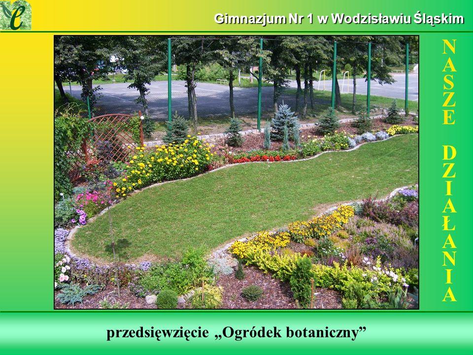 Wybrane działania w ramach zdobywania Zielonego Certyfikatu przedsięwzięcie Ogródek botaniczny NASZE DZIAŁANIANASZE DZIAŁANIA Gimnazjum Nr 1 w Wodzisławiu Śląskim