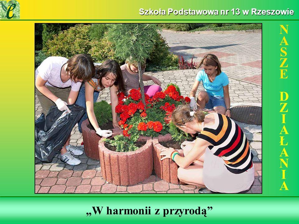 Wybrane działania w ramach zdobywania Zielonego Certyfikatu W harmonii z przyrodą NASZE DZIAŁANIANASZE DZIAŁANIA Szkoła Podstawowa nr 13 w Rzeszowie